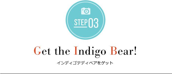 STEP03 Get the Indigo Bear